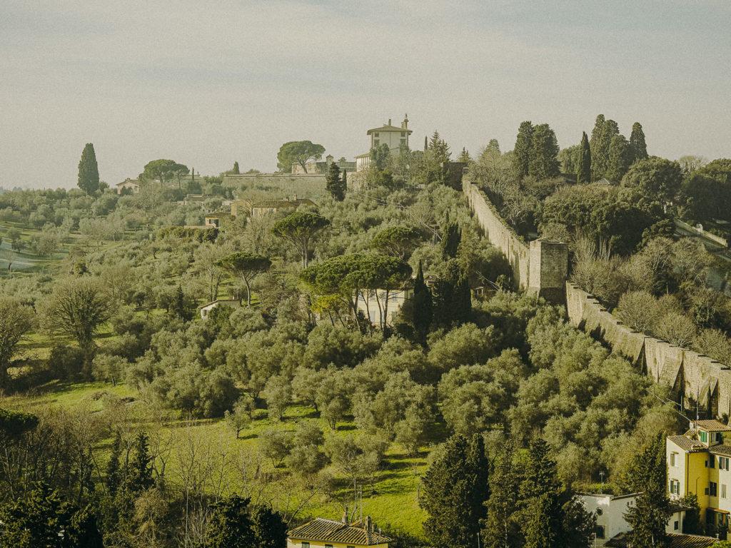 wonderful tuscany landscape